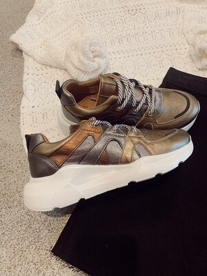 Dwrs Sneakers | New Jersey | Metallic Mix