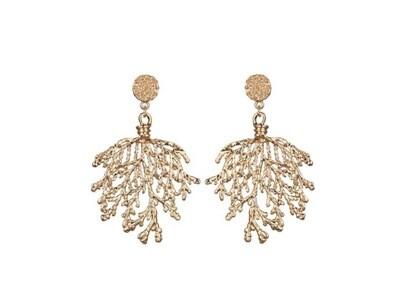 Margot Bardot Earrings | Golden Coral