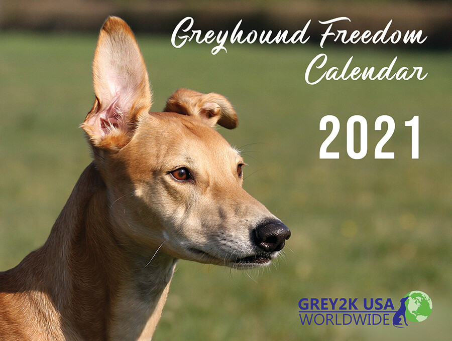 2021 Greyhound Freedom Calendar