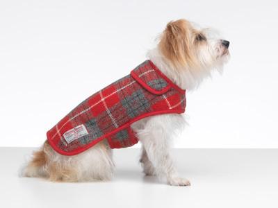 Hoxton - 頂級 Harris Tweed 材質風衣