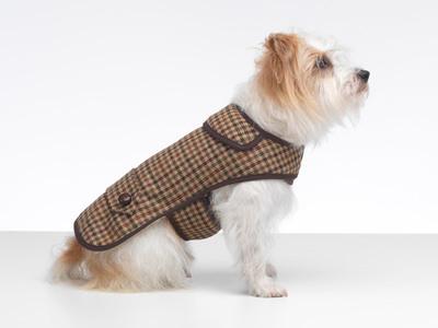 Sidworth 時尚『英倫風格風衣』