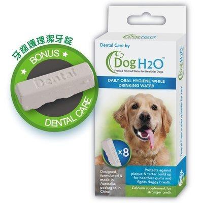 Dog H2O 濾水機-濾水機潔牙錠/犬用