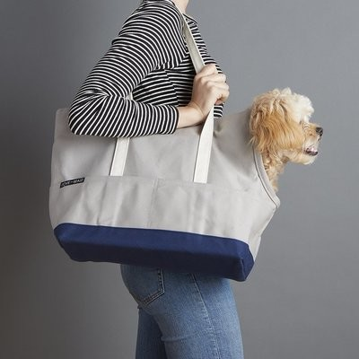 灰藍色帆布寵物包