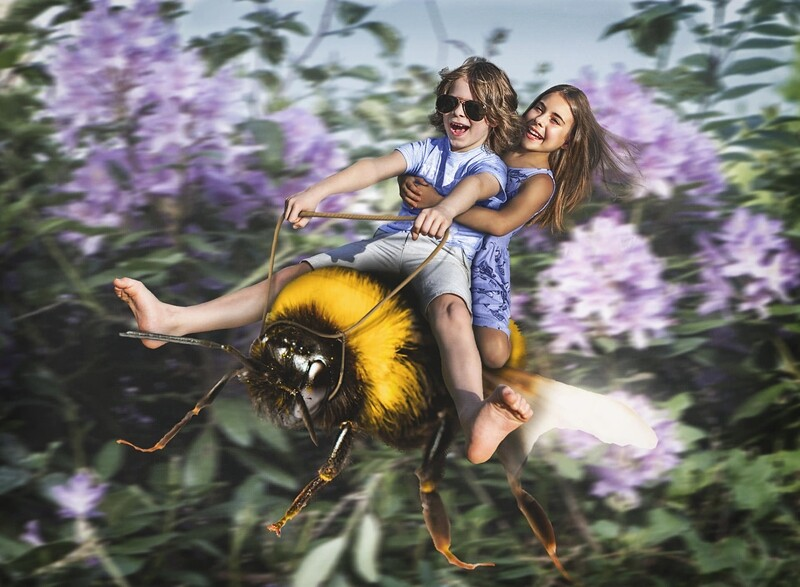 Life of Whimsy // The Great Bee Escape