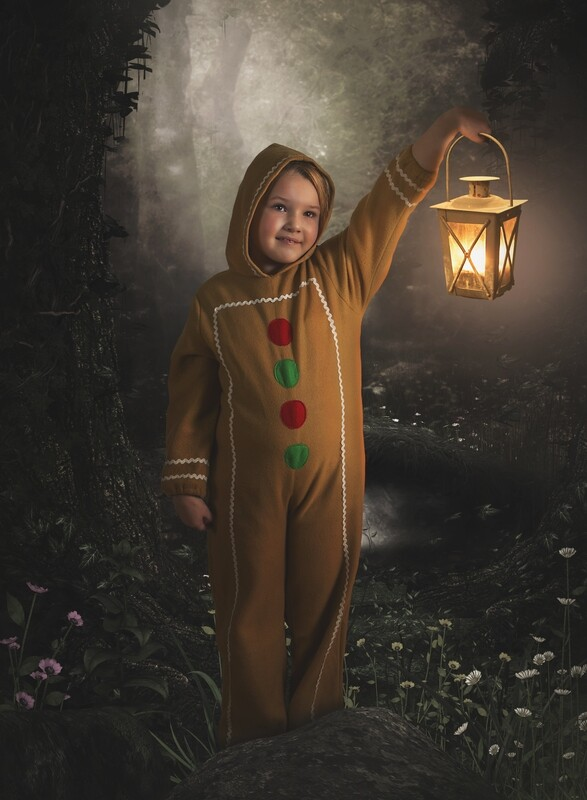 Life of Whimsy // The Gingerbread Man