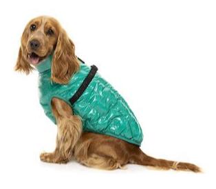Sea Green Calabasas Jacket
