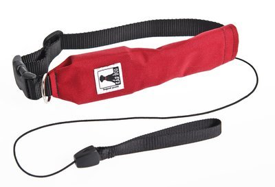 Release N Run Dog Leash