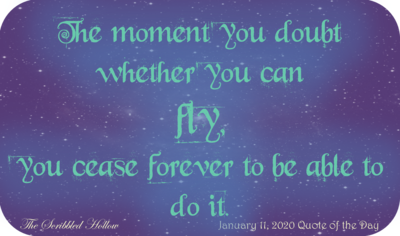 You can Fly Magnet - Jan 11th Quote