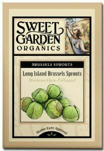 Long Island Brussels Sprouts