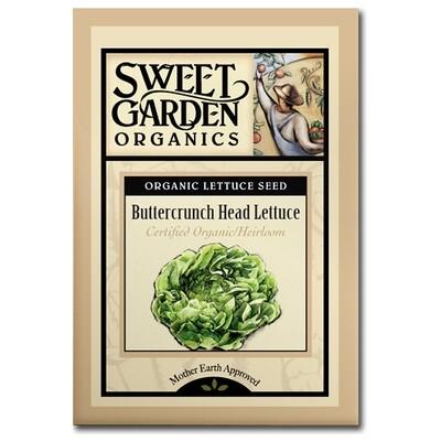 Buttercrunch Head Lettuce