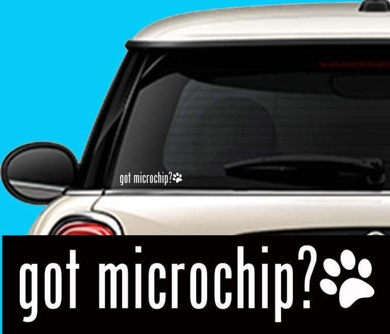 Got Microchip? w/Paw vinyl sticker