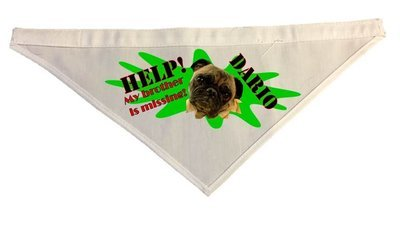 Custom Dog Bandanna for Lost & Found Cheerleaders