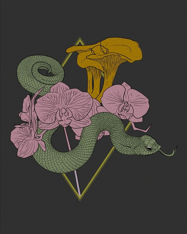 Hognose | Chanterelles | Orchids