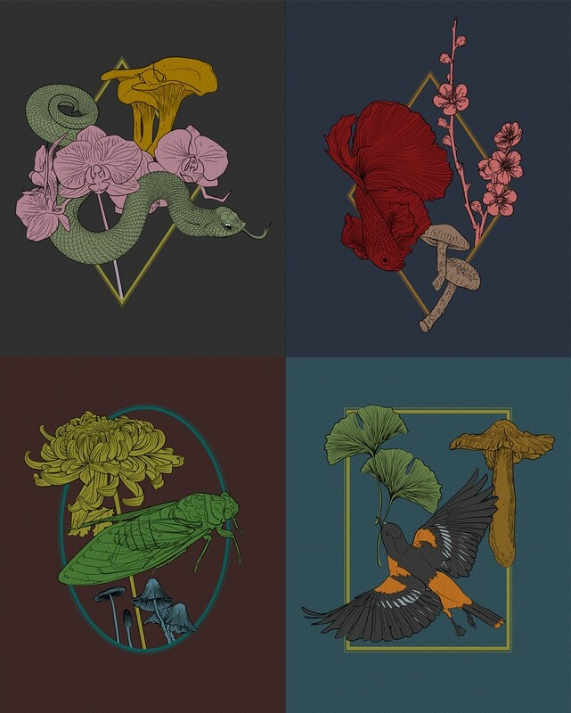 Nature Samples–Set of four 8x10