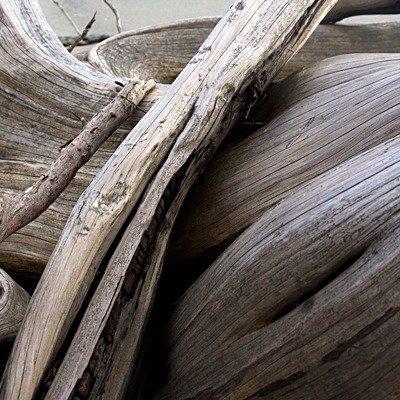 Warm Dry Driftwood