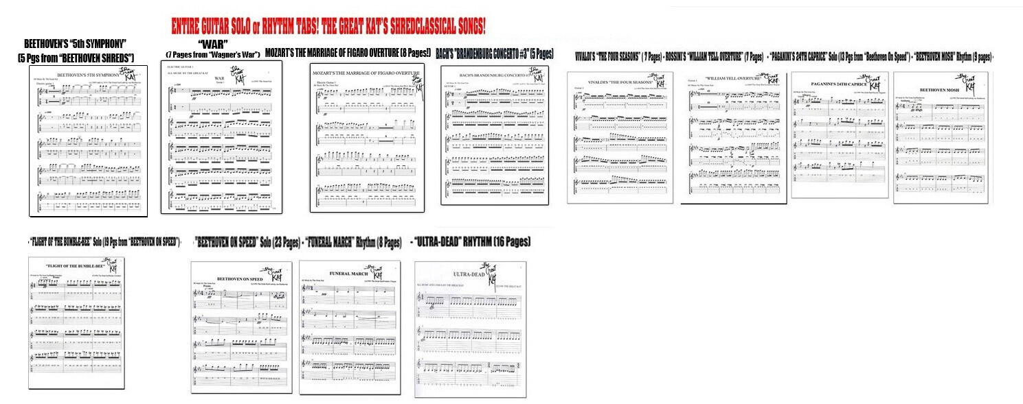GUITAR TABS! Each With FREE KAT GUITAR PICK! GREAT KAT SHREDCLASSICAL SONGS! BEETHOVEN! MOZART! BACH! PAGANINI! BUMBLE-BEE! VIVALDI! ROSSINI! & MORE! Personalized by GREAT KAT (8x10 Paper) $29.99 Each