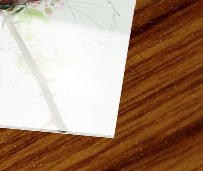 Acrylic frame (4mm)