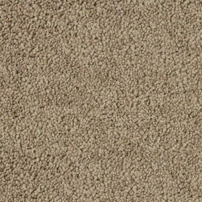 Beaulieu Abbey Road 30oz Stainproof Carpet