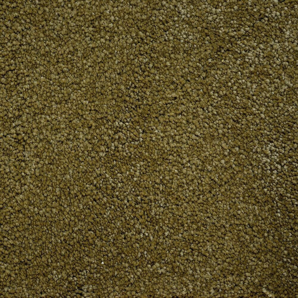 Beaulieu Bichon 46oz Stainproof Carpet