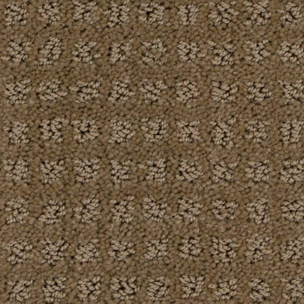 Beaulieu Basenji 25oz Stainmaster Carpet