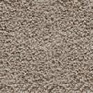 Beaulieu - Briard 40oz Stainmaster Carpet