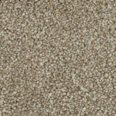 Beaulieu Calm Sanctuary 60oz Stainproof Carpet