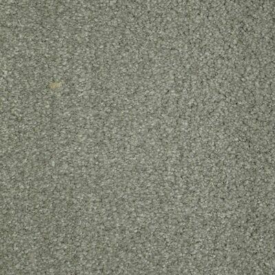 Beaulieu Collie 60oz Stainmaster Carpet