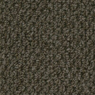 Beaulieu Cupido II 35oz Stainproof Carpet