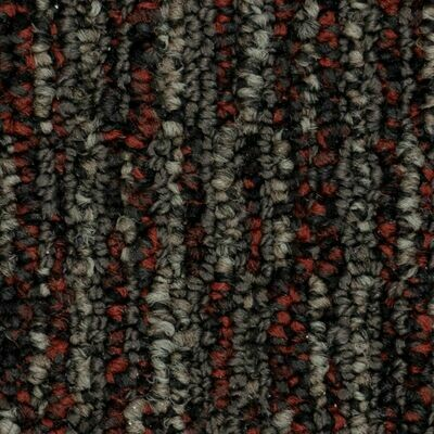 Beaulieu Cypher 28oz Stainproof Carpet