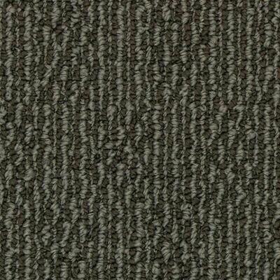 Beaulieu Deep Feelings 20oz Stainproof Carpet