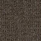 Beaulieu Fleuretta 35oz Stainproof Carpet