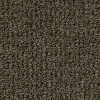 Beaulieu Fleury 35oz Stainproof Carpet