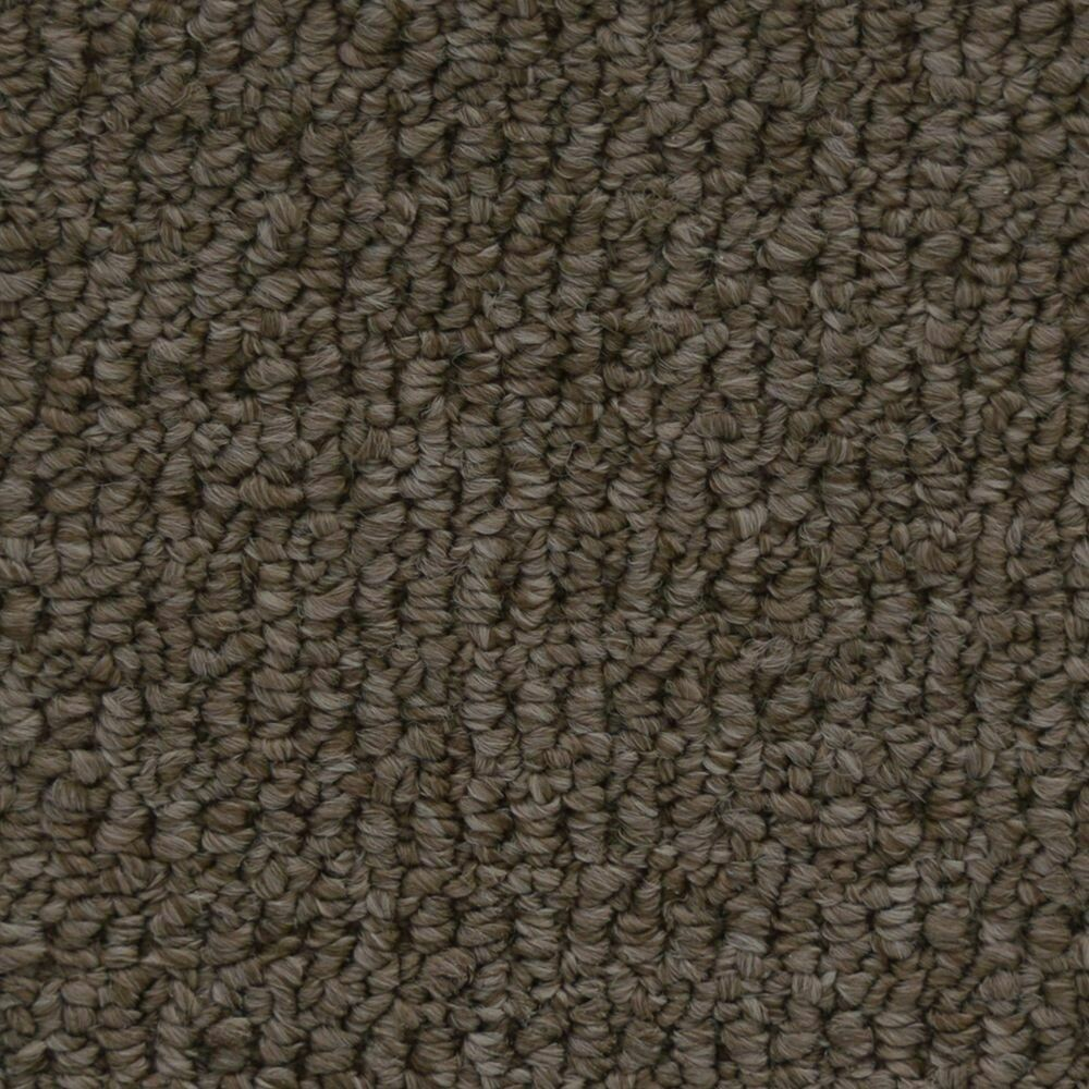 Beaulieu Fleury 35oz Stainproof Carpet