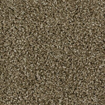Beaulieu High Five 30oz Stainproof Carpet