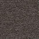 Beaulieu Opus II 40oz Stainproof Carpet