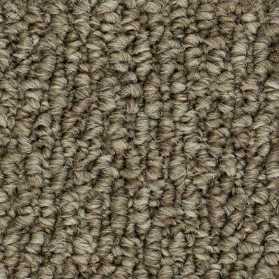 Beaulieu Papilio II 35oz Stainproof Carpet