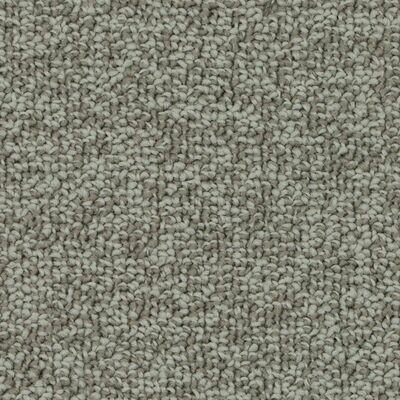 Beaulieu Pure Passion 25oz Stainproof Carpet