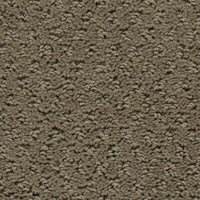 Beaulieu Saluki 25oz Stainproof Carpet