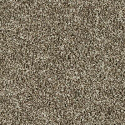Beaulieu Silky Dazzle 63oz Stainproof Carpet
