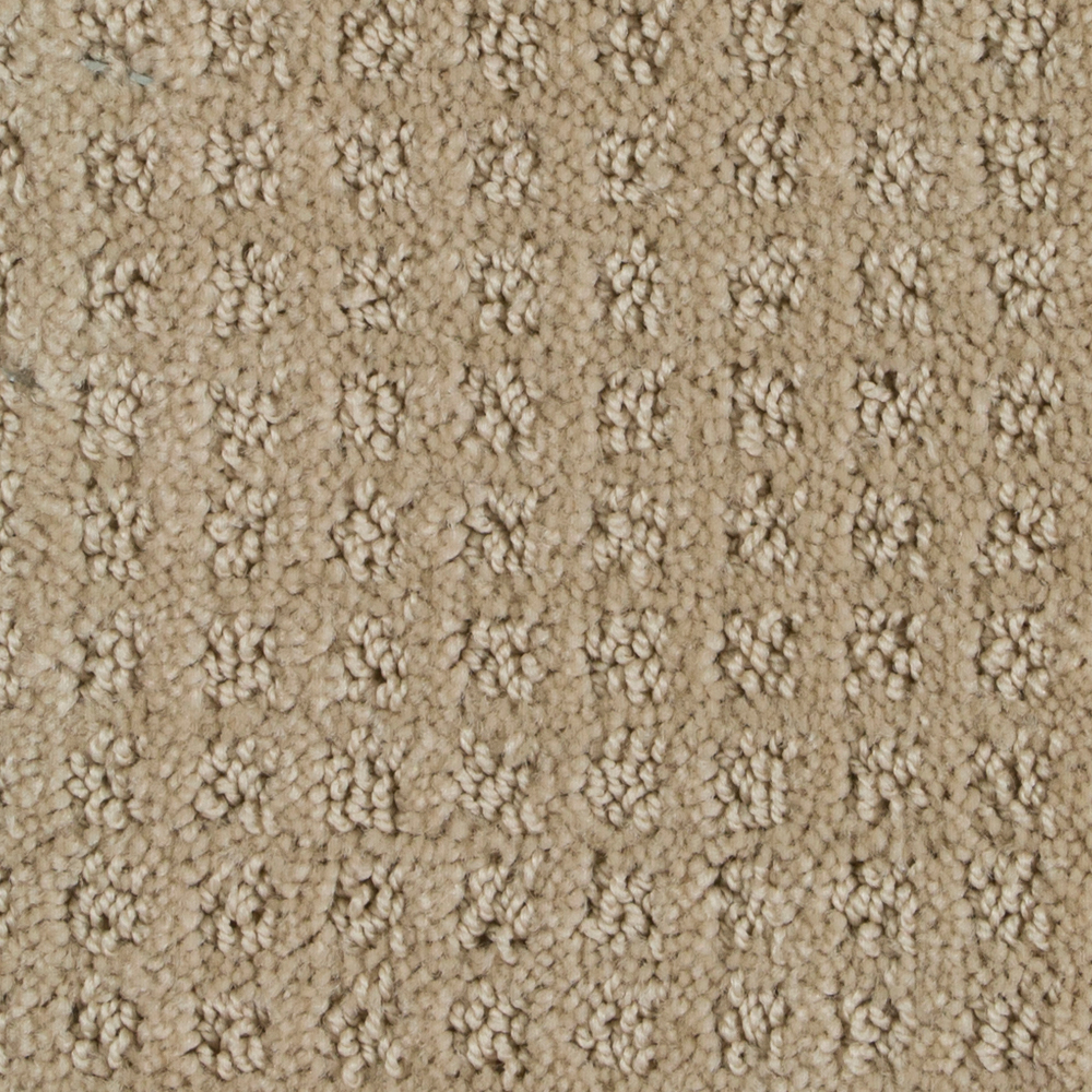 192 sq ft roll Beaulieu Basenji 25oz Stainmaster Carpet