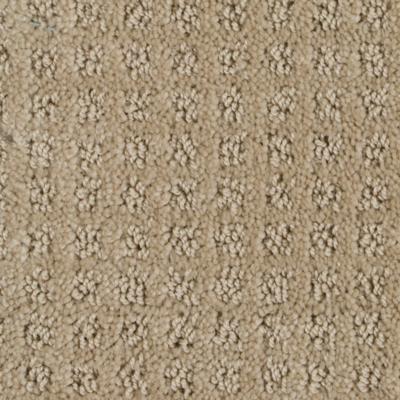 192 sq ft roll Beaulieu Basenji 25oz Stainmaster Carpet