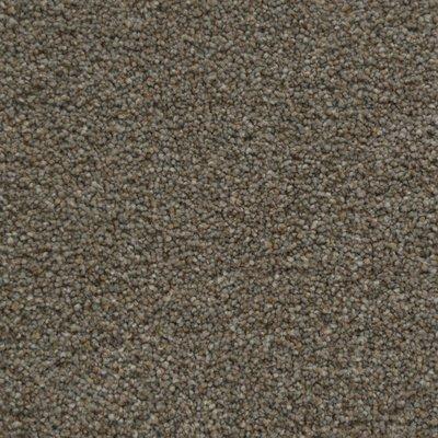 123 sq ft roll Beaulieu Landon 75oz Scotchgard Carpet