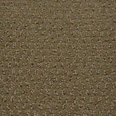 384 sq ft roll Beaulieu Peaceful 40oz Scotchgard Carpet