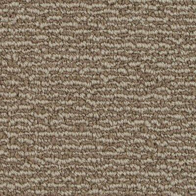 192 sq ft roll Beaulieu Deep Feelings 20oz Scotchgard Carpet