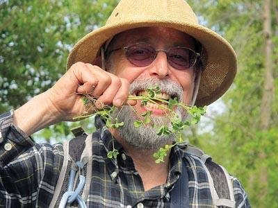 6/24 - Foraging Tour with Expert, Steve Brill