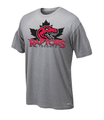 Dryfit t-shirt Raptors