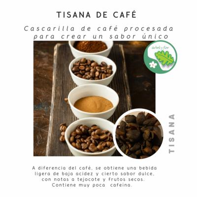 Tisana de Café