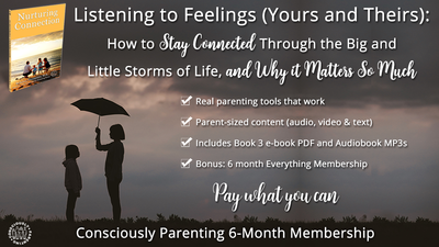 Listening to Feelings: Pay-what-you-can 6-month Support Course