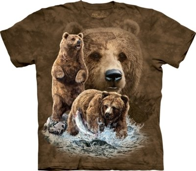 T-Shirt Find 10 Brown Bears