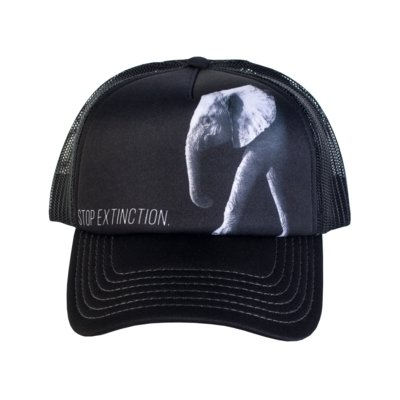 Keps Elephant Stop Extinction